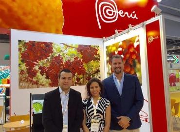Consorcio de Productores de Frutas S.A(CPF) fue fundada en marzo del 2011.